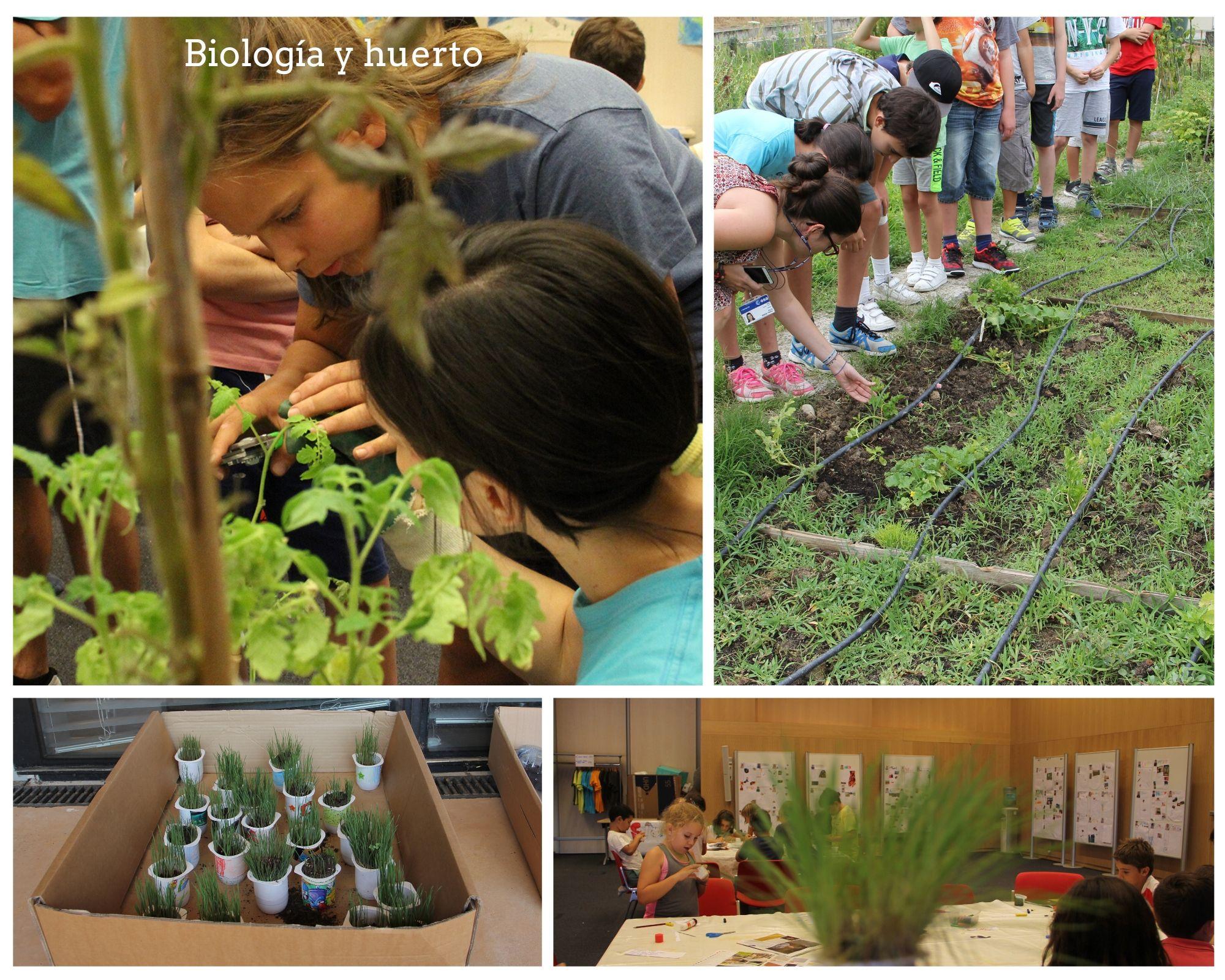 Biología y plantas